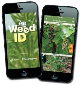 Ag Weed ID